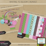 Waiting to Bloom- Bundle