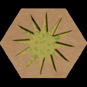 Wren Kit: Hexagon 02