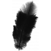 Ophelia Kit: Feather