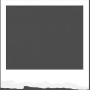 Torn Frames 01: Frame 01