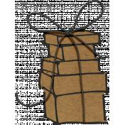 Joy: Presents