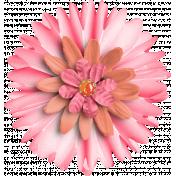 Pink & Orange Flower