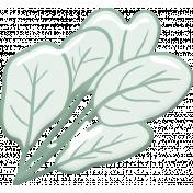 Green Vegetable Leaves