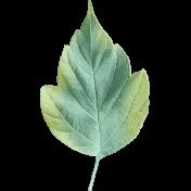 Autumn Mini Kit Leaf 01