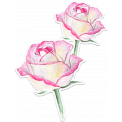 Bloom Pink Roses Sticker