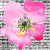 Bloom Pink Watercolor Flower 1