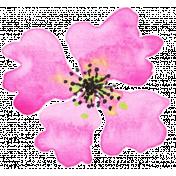 Bloom Pink Watercolor Flower 2