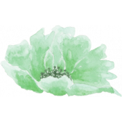 Choose Joy Flower 3 Watercolor