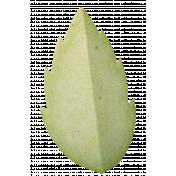 Relative Leaf