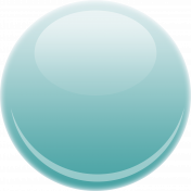 Glossy Teal Button