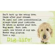Dig Life Goldendoodle 3x5 Card