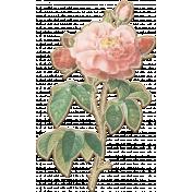 Noble Nature Mini Kit - Flower - Pink