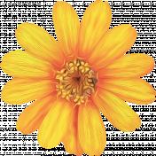 Honey Bee Painted Flower