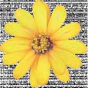Honey Bee Painted Flower 03