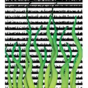 Seaweed 02