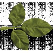 Delish Mini Kit Leaf (02)