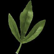 Bearly Spring Leaf (03)