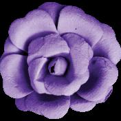 Bright & Cheerful Flower (12)
