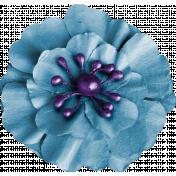 Bright & Cheerful Flower (13)