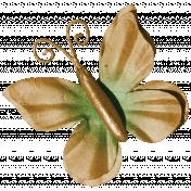 Pumpkin Patch Butterfly 02