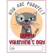 Everyday Is Caturday (Valentine Card 01)