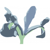 Iris element