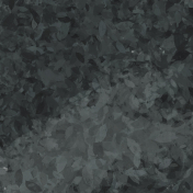 Black Feathery Paper