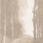 Moody Woods Papers- Sepia