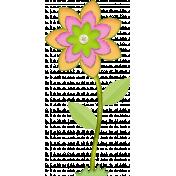 Summer colors flower