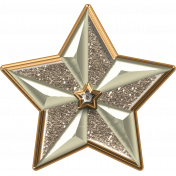 Gold/Silver Star
