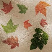 Metallic Foil Leaf Paper