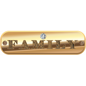 Amethyst Gold Family Tag