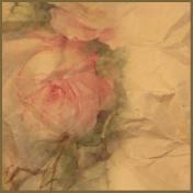 Rebel Roses Paper