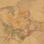Rebel Rose Yellow Rose Paper