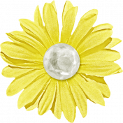 Our House- Yellow Flower