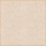 Vintage Paper Styles Set 01- Paper Texture 08