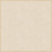 Vintage Paper Styles Set 02- Paper Texture 04