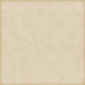 Vintage Paper Styles Set 02- Paper Texture 06