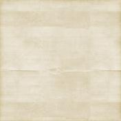Vintage Paper Styles Set 02- Paper Texture 07