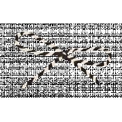 Spookalicious- Black/White Striped String Bow