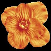 No Tricks, Just Treats Add-On- Vintage Orange Flower