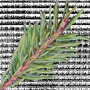 Nutcracker December BT Mini Kit- Green Pine Branch