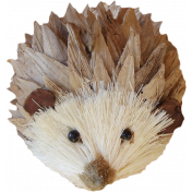 Sweater Weather- Hedgehog Pine Cone