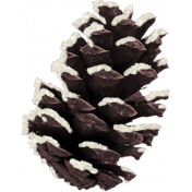Sweater Weather- Pinecone