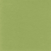 Sweater Weather Solid Papers- Green