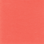 Sweater Weather Solid Papers- Salmon