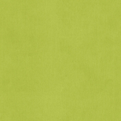 Birthday Wishes- Green Solid Paper