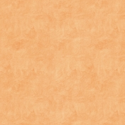 Birthday Wishes- Orange Solid Painted Paper