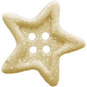 Birthday Wishes- Tan Glitter Star Button