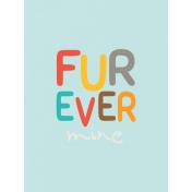 Kitty- Journal Card- Furever Mine- 3 x 4
